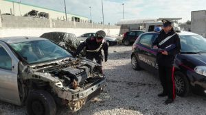 carabinieri bisceglie pirata_0125
