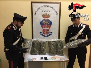 carabinieri-bisceglie_0353